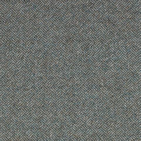 Parquet Lichen